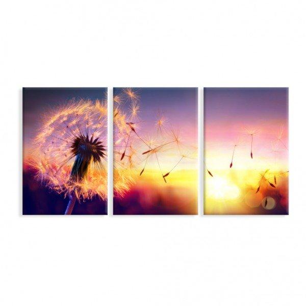 Kit 3 Telas Canvas Sunset Dandelion