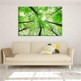 Tela Canvas Floresta Mata Verde