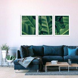 Kit 3 Quadros Decorativos Full Folhas Verdes Branco