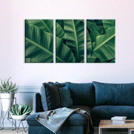 Kit 3 Telas Canvas Folhas Verde Natureza Vibes
