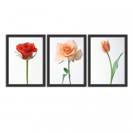 Kit 3 Quadros Decorativos Combinação de Flores Preto