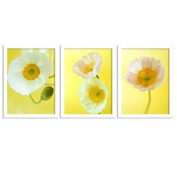 Kit 3 Quadros Decorativos Flores Amarelas Branco
