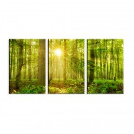 Kit 3 Telas Canvas Decorativas Floresta Verde Raio de Sol