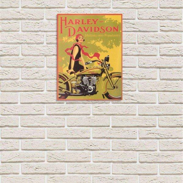 placa decorativa em mdf harley davidson oldschool bike retro com fundo