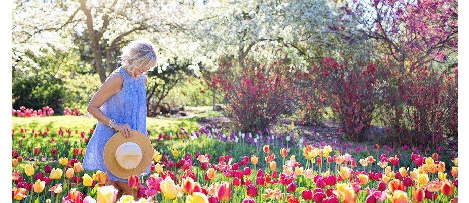 Decoração de Primavera: vamos dar as boas vindas à estação das flores