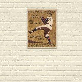 Placa Decorativa em MDF Pennsylvania Baseball Retro