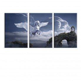 Kit 3 telas Canvas Pegasus