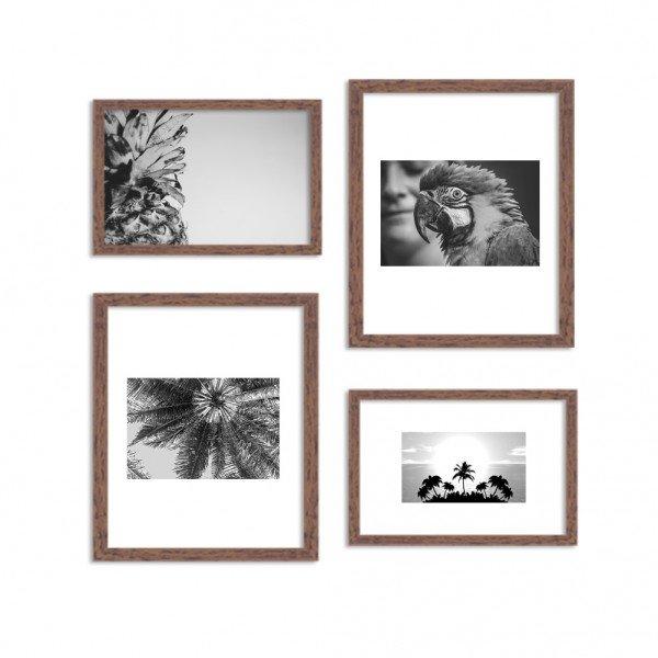 Conjunto de 4 Quadros Decorativos Premium Tropical Brasileiro