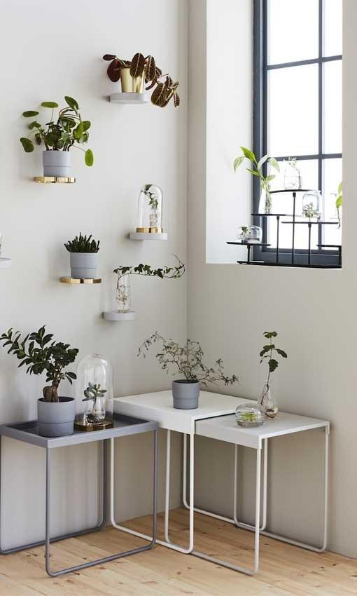 decorar plantas prego e martelo prateleira