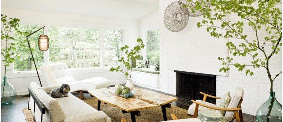 10 dicas: plantas na decoração, sem mistério algum
