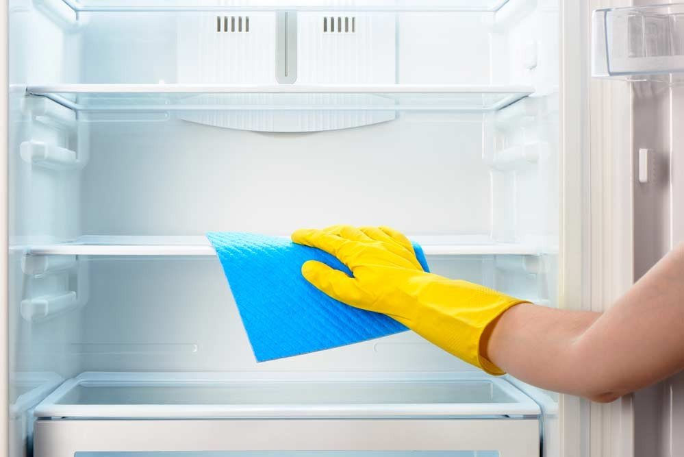 limpeza de geladeira por dentro prego e martelo