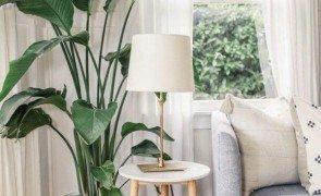 vaso grande de plantas para sala de estar prego e martelo