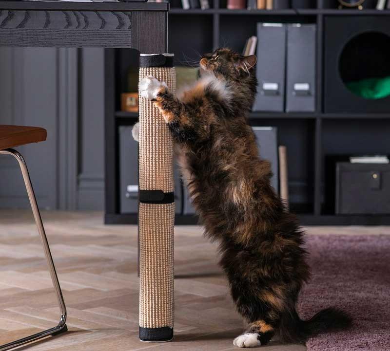 perna de mesa gato prego e martelo