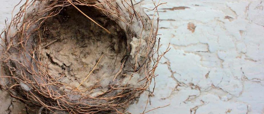 Síndrome do ninho vazio? Confira dicas de decoração para reinventar a sua casa.